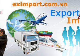Khóa học Xuất nhập khẩu, thực hành thực tế. 06